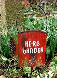Herb Garden Watering Can!-watering can, gardening, spring, easter, tin, primitive