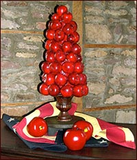 Great Apple Topiary!!-topiary, apple, christmas, summer, Americana, red, apples, primitive decor