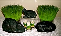 Blackened Wax Bunnies & Sheep Dusted with Cloves!-bunnies, rabbit, bunny, sheep, cloves, hare, easter, spring